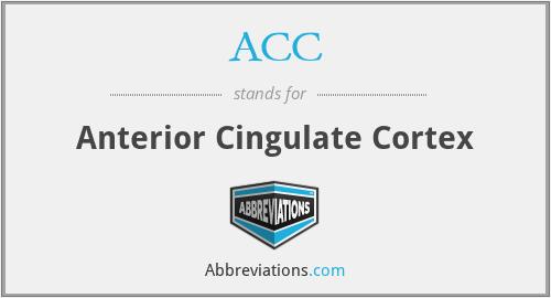 ACC - Anterior Cingulate Cortex