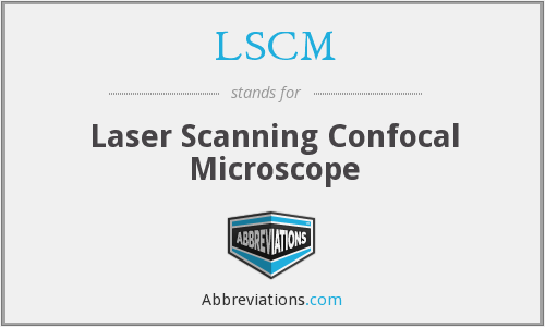 LSCM - Laser Scanning Confocal Microscope