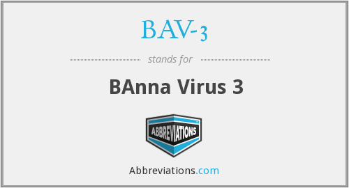 What does BAV-3 stand for?