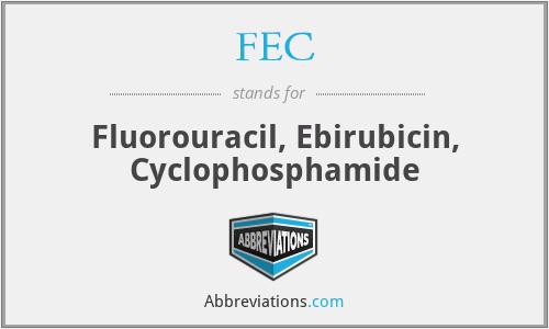 FEC - Fluorouracil, Ebirubicin, Cyclophosphamide