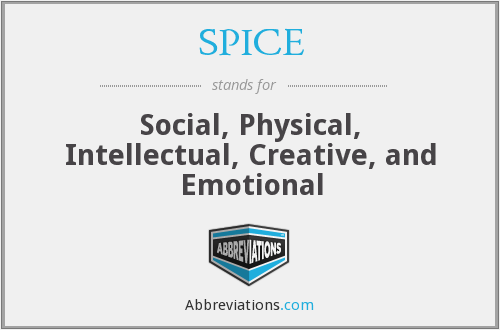 SPICE - Social, Physical, Intellectual, Creative, and Emotional