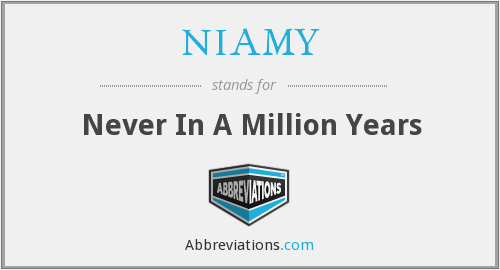 NIAMY - Never In A Million Years