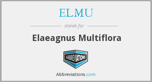 What does ELMU stand for?