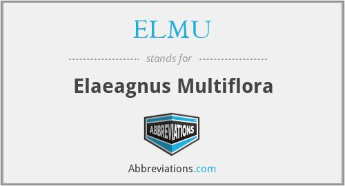 ELMU - Elaeagnus Multiflora