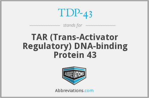 TDP-43 - TAR (Trans-Activator Regulatory) DNA-binding Protein 43
