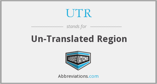 UTR - Un-Translated Region