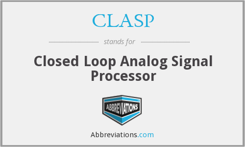CLASP - Closed Loop Analog Signal Processor