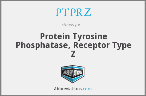 What does PTPRZ stand for?