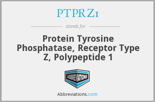 What does PTPRZ1 stand for?