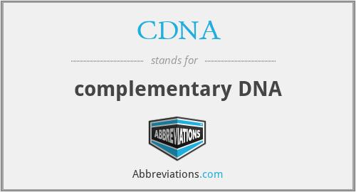 CDNA - complementary DNA