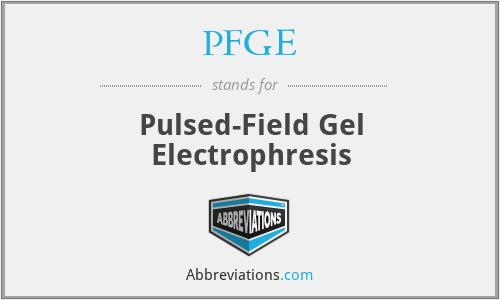 PFGE - Pulsed-Field Gel Electrophresis