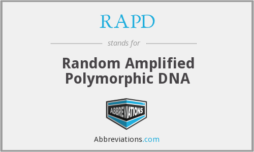 What does RAPD stand for?