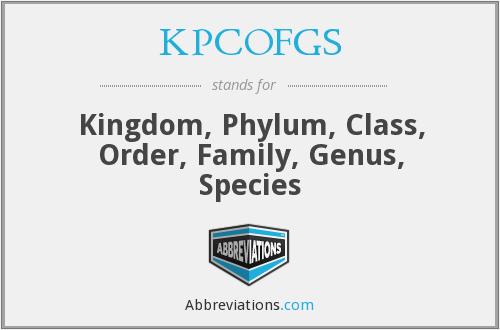 KPCOFGS - Kingdom, Phylum, Class, Order, Family, Genus, Species