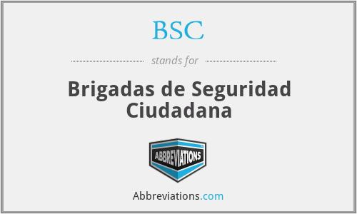 BSC - Brigadas de Seguridad Ciudadana