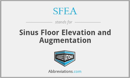 Sinus Floor Elevation Implant : Sfea sinus floor elevation and augmentation