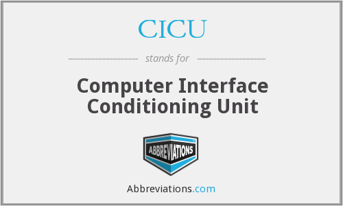 CICU - Computer Interface Conditioning Unit