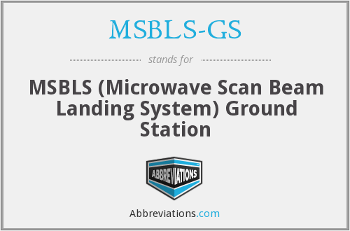 What does MSBLS-GS stand for?