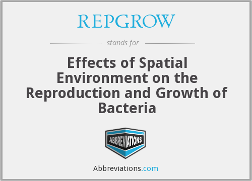 REPGROW - Effects of Spatial Environment on the Reproduction and Growth of Bacteria
