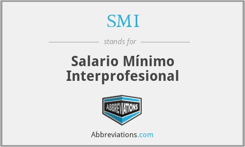SMI - Salario Mínimo Interprofesional