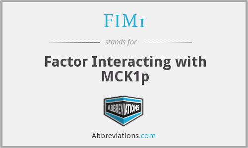FIM1 - Factor Interacting with MCK1p