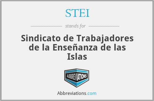 STEI - Sindicato de Trabajadores de la Enseñanza de las Islas