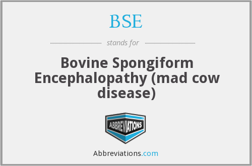 BSE - Bovine Spongiform Encephalopathy (mad cow disease)
