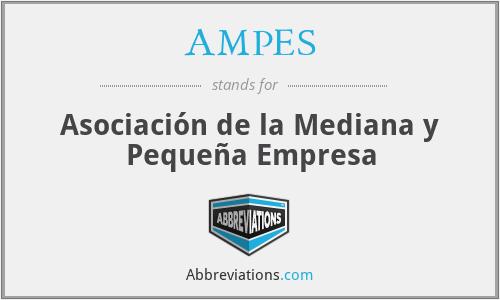 AMPES - Asociación de la Mediana y Pequeña Empresa
