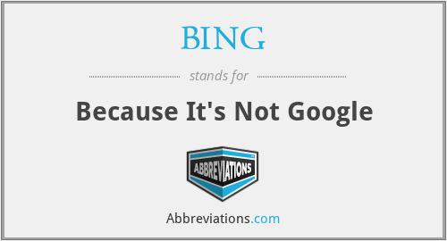 BING - Because It's Not Google