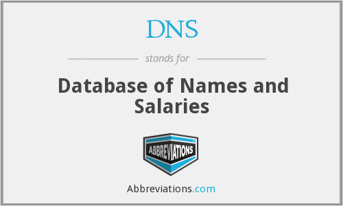 DNS - Database of Names and Salaries