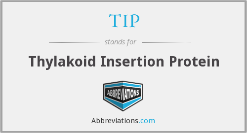 TIP - Thylakoid Insertion Protein