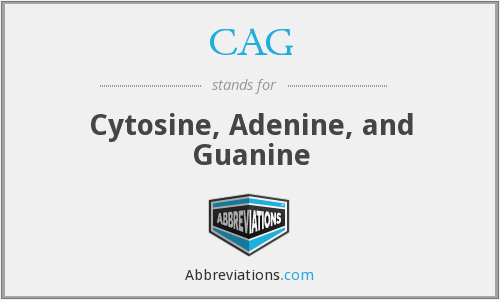 CAG - Cytosine, Adenine, and Guanine