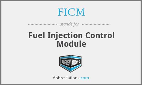 FICM - Fuel Injection Control Module