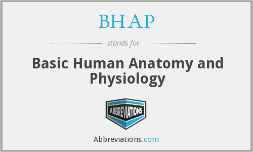 BHAP - Basic Human Anatomy and Physiology