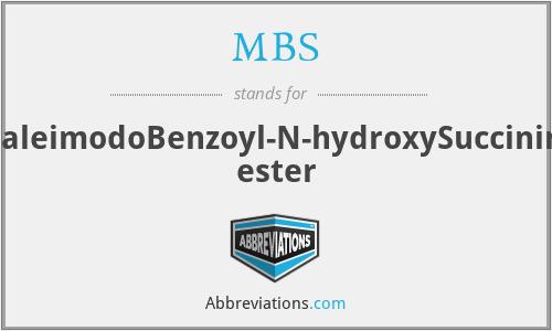 MBS - m-MaleimodoBenzoyl-N-hydroxySuccinimide ester