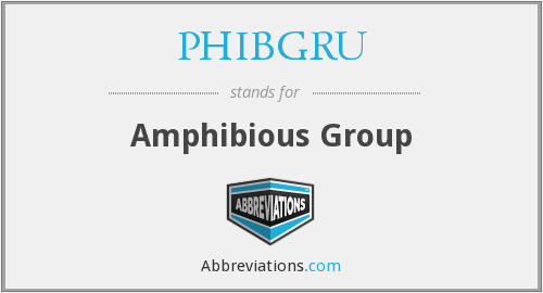 What does PHIBGRU stand for?