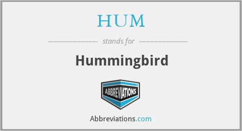 HUM - Hummingbird