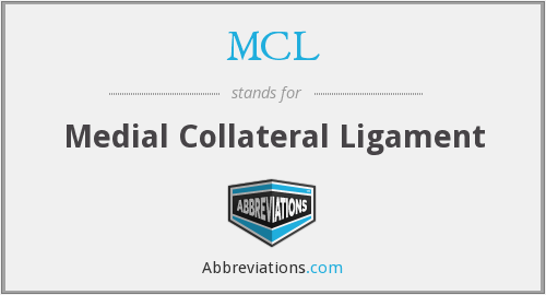 MCL - Medial Collateral Ligament
