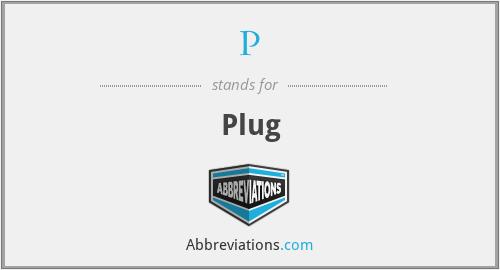 P - Plug