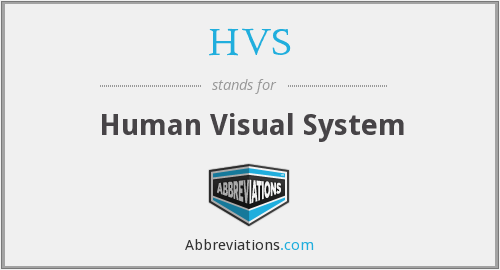 HVS - Human Visual System