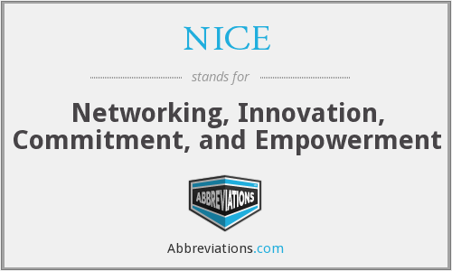 NICE - Networking, Innovation, Commitment, and Empowerment