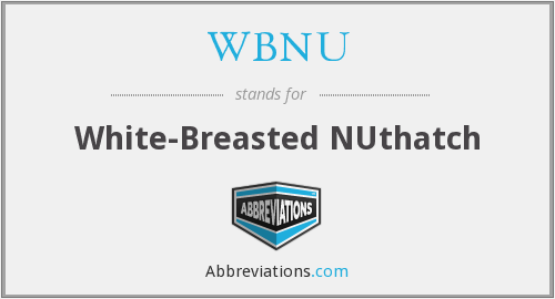 What does WBNU stand for?