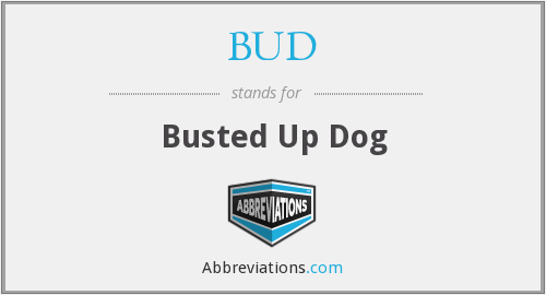 BUD - Busted Up Dog