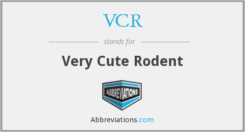 VCR - Very Cute Rodent