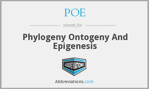 POE - Phylogeny Ontogeny And Epigenesis