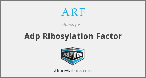 ARF - Adp Ribosylation Factor