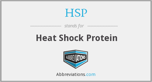 HSP - Heat Shock Protein