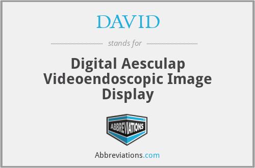 DAVID - Digital Aesculap Videoendoscopic Image Display