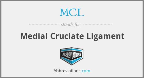 MCL - Medial Cruciate Ligament