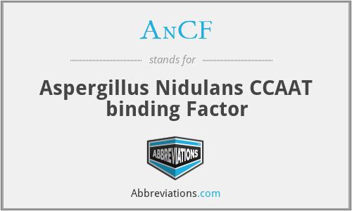 AnCF - Aspergillus Nidulans CCAAT binding Factor